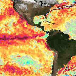 Sea surface temperature differences on March 1, 2016. Dark red indicates much warmer water.