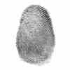 Hackers Use a Photograph of a Fingerprint to Bypass Phone Security