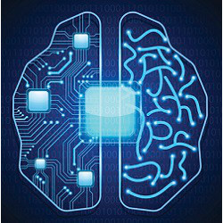 brain with computer circuitry, illustration