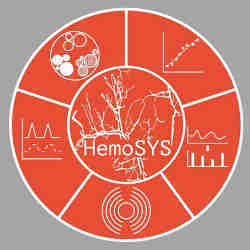 The HemoSYS logo.