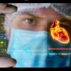 medical person holding transparency with image of human heart, illustration