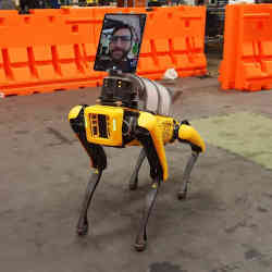 The Spot robot dog.