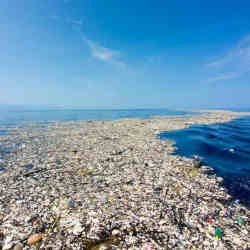 Part of the Great Pacific Garbage Patch.