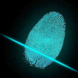 The biometric security systems incorporate iris, face, and fingerprint recognition capabilities.