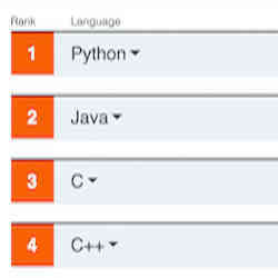 The top programming languages in the current ranking.