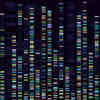 Genetic Analysis Method Could Advance Personal Genomics