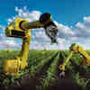 Australia's Report on Agtech Confirms Technology Can Lead to Fertile Future