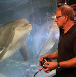 Edge CEO Will Conti uses a handheld controller to direct the robot dolphin.