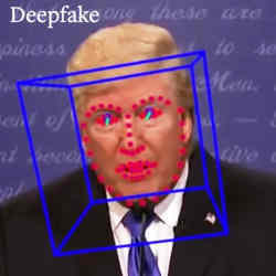 A video of former U.S. president Donald Trump that was determined to be a deepfake.
