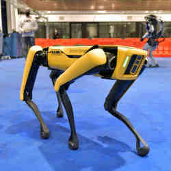 A robotic dog made by Boston Dynamics.