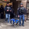 NYPD Robot Dog's Run is Cut Short After Fierce Backlash